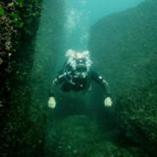 Diving for Beginners in Sozopol