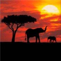 Кения - невероятна и дива
